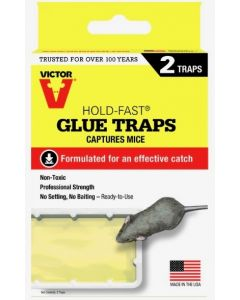 Victor Hold-Fast Mouse Glue Tray ~ 2 per pack