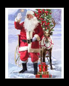 Christmas Micro Mink Throws ~ Santa & Rudolph