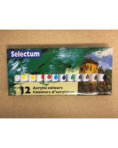 Selectum Acrylic Color Paints ~ 12 per box