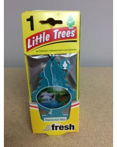 Little Tree Air Fresheners ~ Rainforest